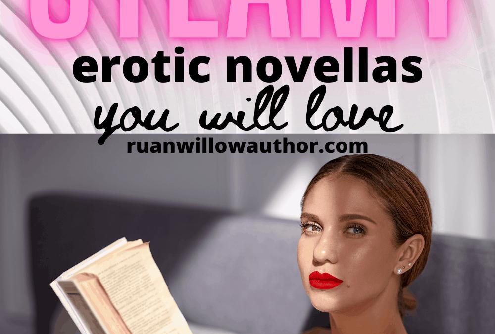 Short Erotic Fiction Novellas You Will Love
